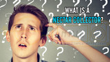 What is a Nectar Collector?