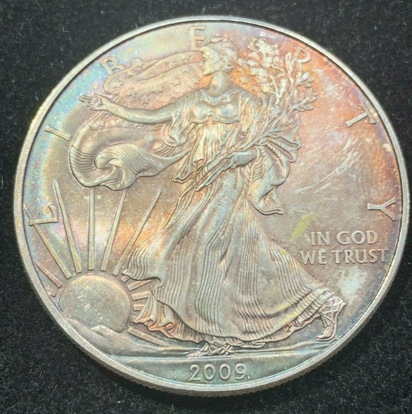 2009 American Silver Eagle Toned, Coin no.5