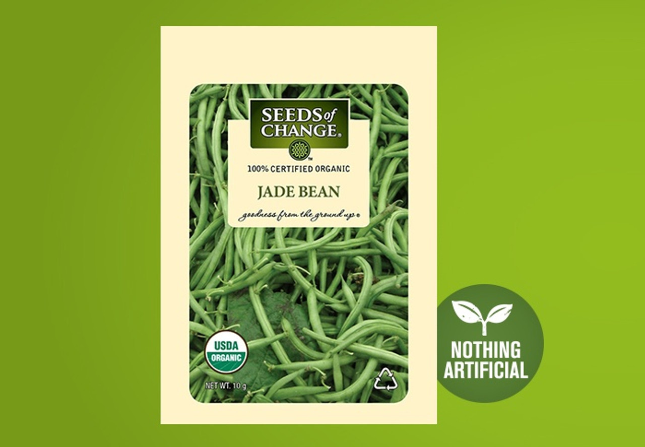 The deliciously tender pods of this early, productive, heat tolerant bean are a glossy deep green, and stay slender and straight on sturdy, uprights plants