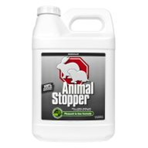 Animal Stopper is a highly effective formula for preventing armadillo, gopher, groundhog, rabbit, raccoon and skunk damage to all shrubs, flowers, edible crops and turf areas. With rosemary oil, mint oil, cinnamon oil and putrescent whole egg solids as active ingredients, this product works by smell, taste and feel. Lasts for approximately 30 days, regardless of weather. Covers an area of 9,000 sq ft.
