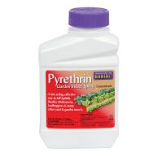 Pyrethrin Garden Insect Spray Concentrate is a natural option for economical, broad spectrum garden insect control. Just mix 1 to 4 teaspoons of this product per gallon of water to eliminate an array of pests. Carefully read and follow directions on label.