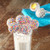 Babycake Mini Cake Pops CPM-20 Decorated Select Brands