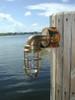 Nautical passageway dock light