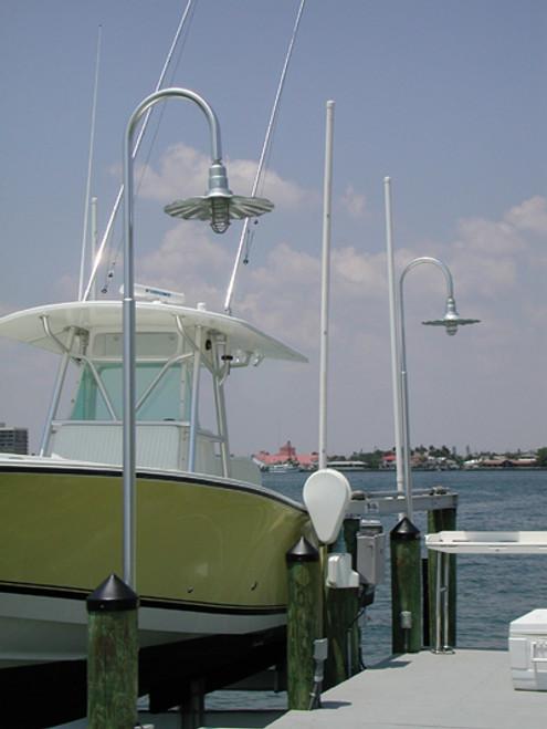Aluminum Wharf Pole Light w/Radial Wave Shade-11 foot