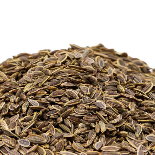 """Both Dill Seed and Dill Weed come from the same plant, but the weed is made from dried leaves, whereas the seed is produced by the flowers. They can be used interchangeably in recipes where you want a piquant taste to set off your dishes' other ingredients. Add to sour cream-based sauces, mayonnaise-based dressings, salads and soups. Works well as a rub for meats or in sauces to accompany fish. Use in pickled cucumbers for a unique variety of """"dill pickles"""", and in recipes for bread, potatoes and vegetables."""
