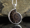 Ammonite Sterling Silver Pendant 3