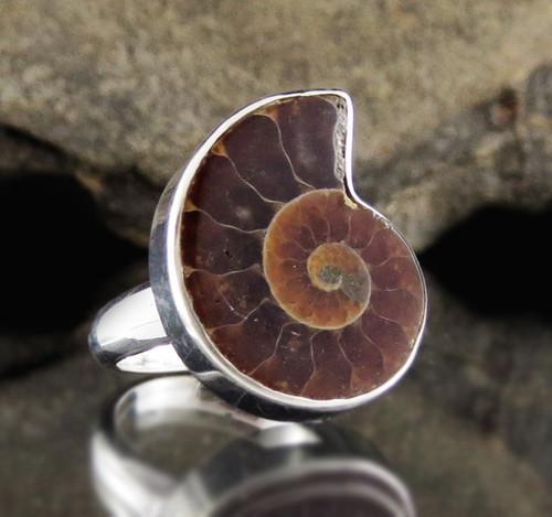 Ammonite Sterling Silver Ring 5
