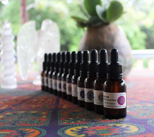 Jain 108 Essences Set of 12 Stock Bottles