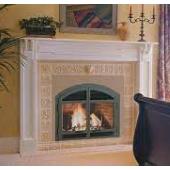DV42DX Gas Fireplace