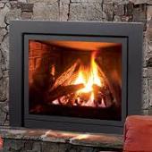EG 31 Gas Fireplace