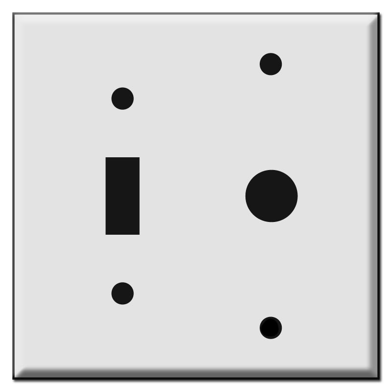 Combination Wall Plate Cover w/ Toggle & Hole for Wall Mount Variable Speed Controllers