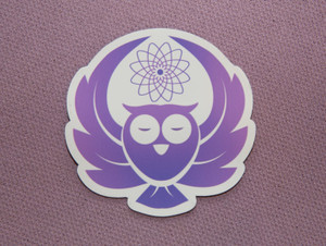Owl: Crown Chakra Animal