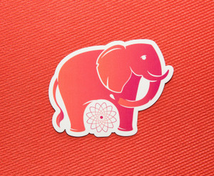 Elephant: Root Chakra Animal