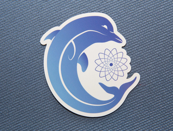Dolphin: Third Eye Chakra Animal