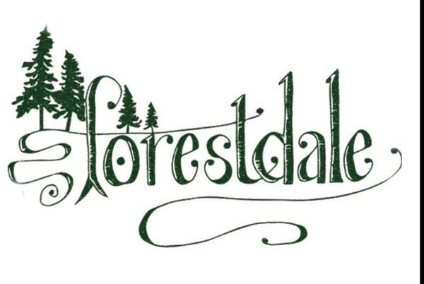 Forestdale Essential Oil Incense