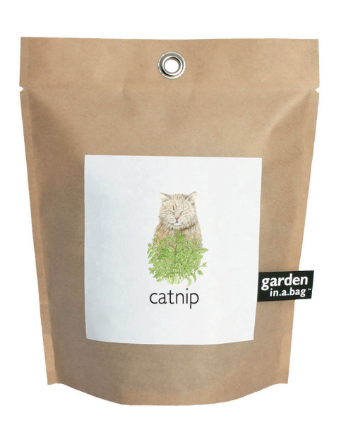 Garden-in-a-bag Catnip