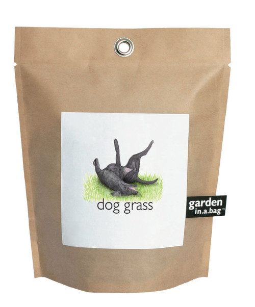 Garden-in-a-bag Dog Grass