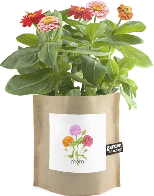 Garden-in-a-bag Mom