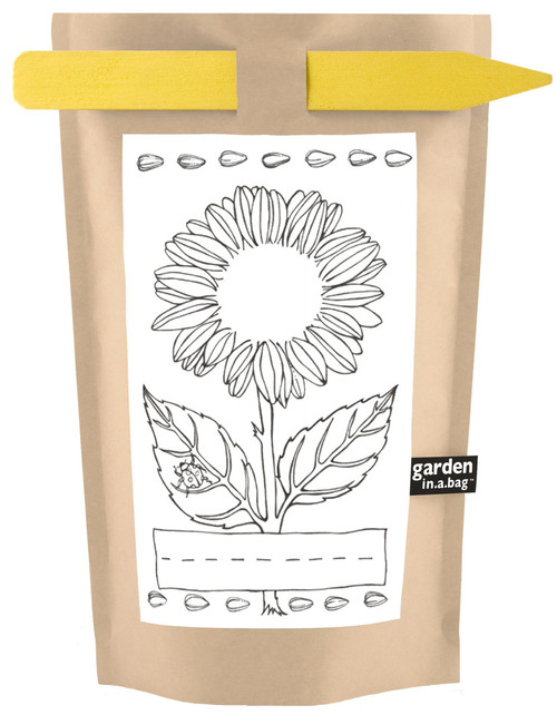 Kids Garden-in-a-bag Sunflower