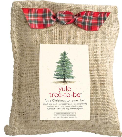 Tree-to-be Yule