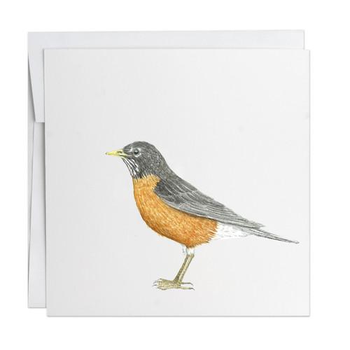 Robin Note Card
