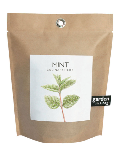 Garden-in-a-bag Mint