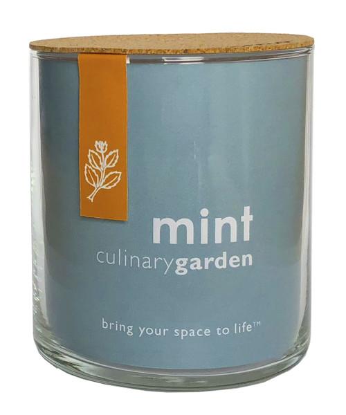 Mint Culinary Garden