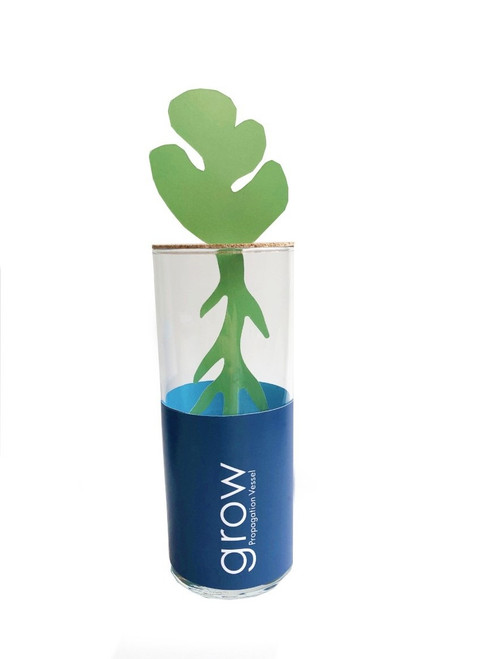 GROW Propagation Vessel - Medium