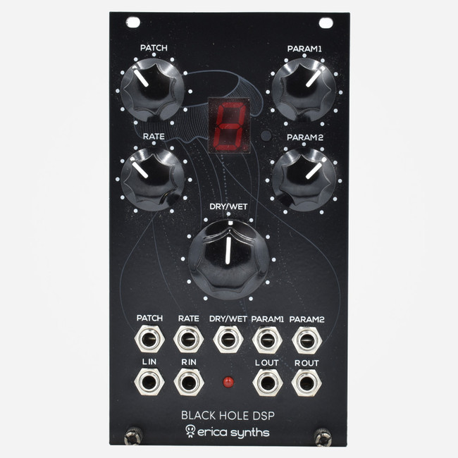 Used Erica Synths Black Hole DSP MK1 Eurorack Multi-effect Module