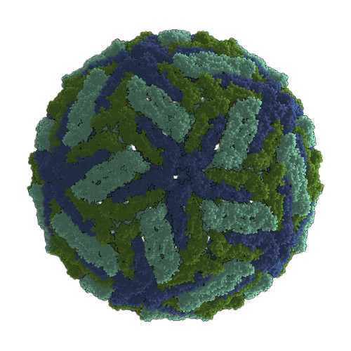 Dengue Virus Serotype 3 Envelope Protein (HEK293)
