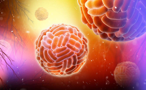 West Nile Virus Envelope Protein