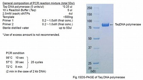 Taq DNA polymerase (+dNTPs) with Standard buffer