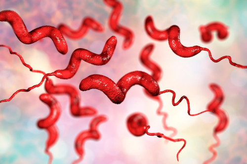 Campylobacter Jejuni Antigen