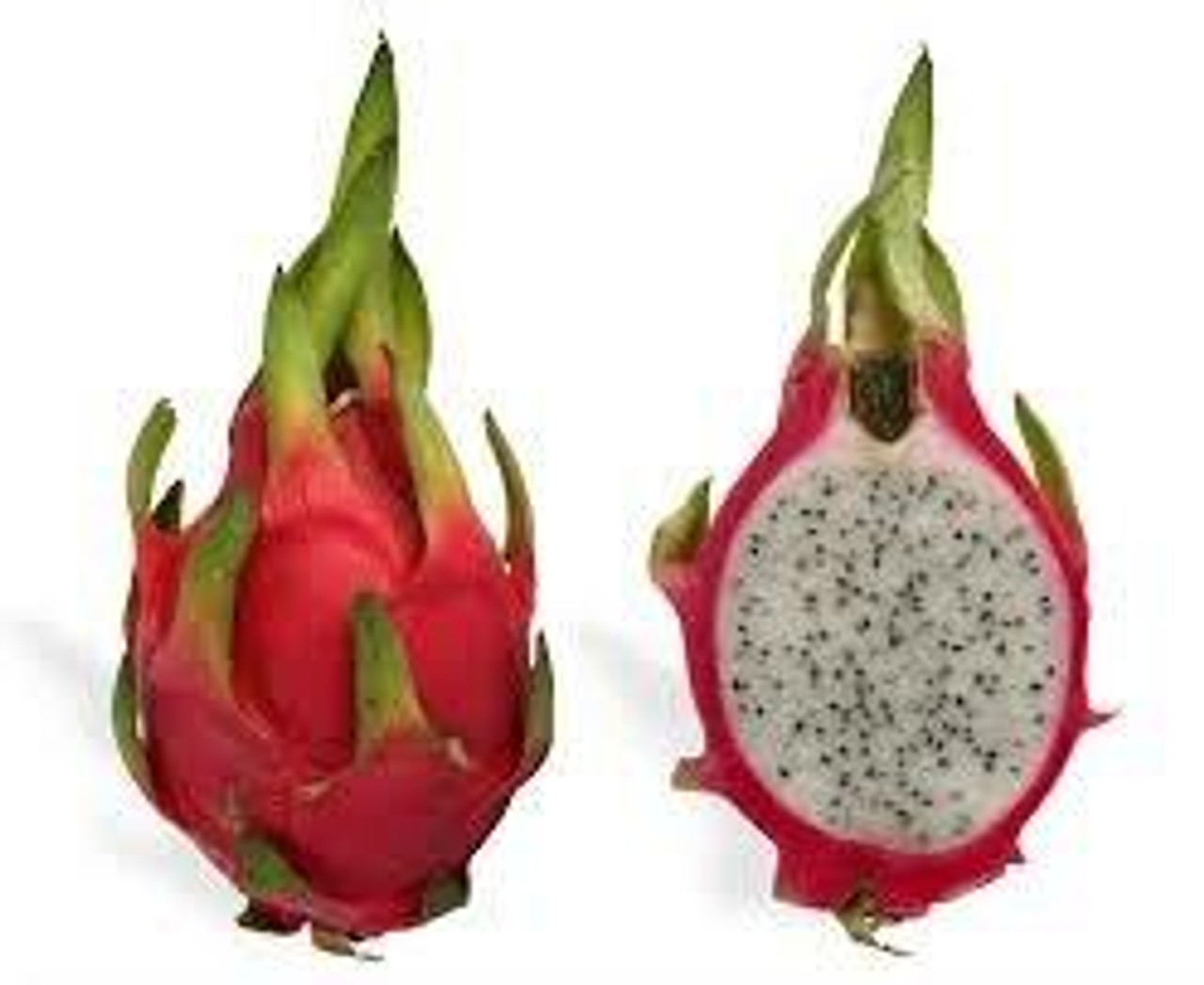 Mom and Pop Flavours DRAGON FRUIT MandP