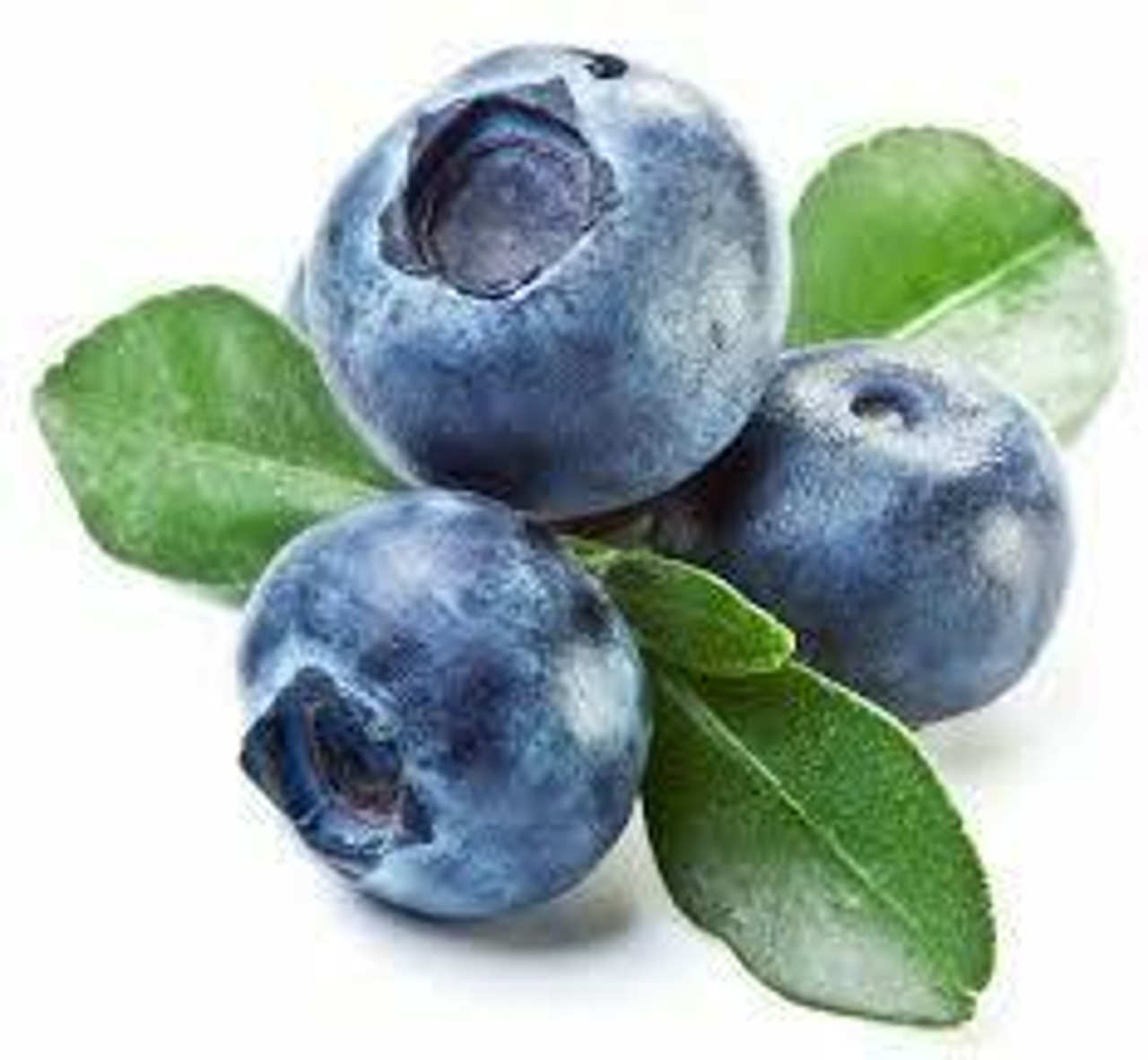 pound1 Flavours BLUEBERRY BV