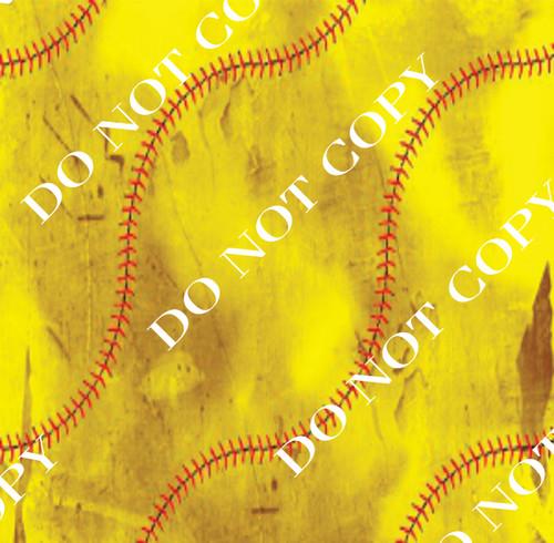 DS Dirty Softball6