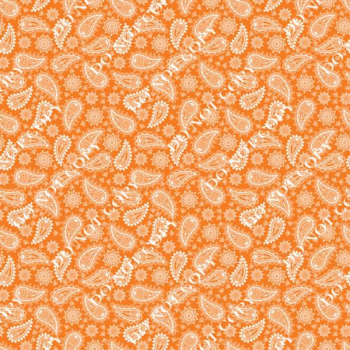 PTO Orange Paisley 2