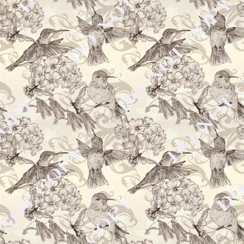 HBAS Humming Birds 2