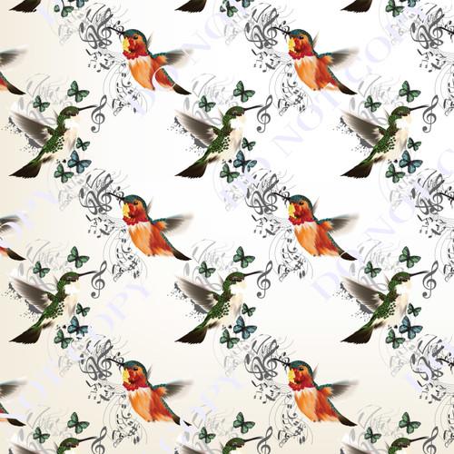 HBAS Humming Birds 12