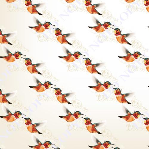 HBAS Humming Birds 13