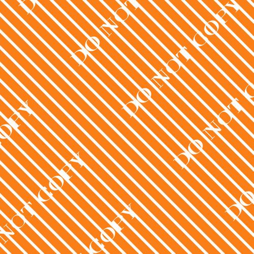 CDSTDF Orange 6