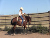 Training a horse to respond to leg pressure is an important part of their training. In this 30 minute video Steve takes you step by step on developing control of the four quarters of the horse with your legs.  Using a gentle dressage technique you will learn how to use your leg to control the shoulders and hind quarters of your horse. This is useful in doing lead changes, flat spins, side passing and more.   You can purchase on DVD or you can download it dirrectly onto your computer by clicking on the link below: https://2258344.flickrocket.com/us/Four-Quarter-Control/p/128644