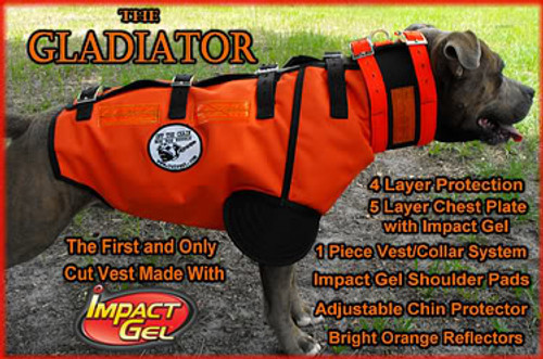 Hog Dog Gladiator Protective Catch Vest on Dog