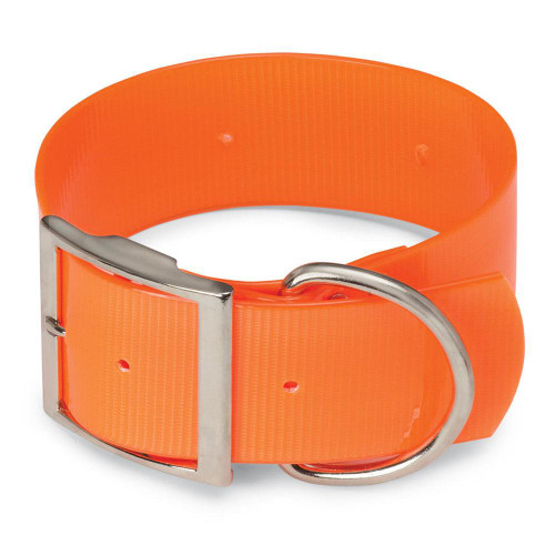 Wide Orange Dog Collar