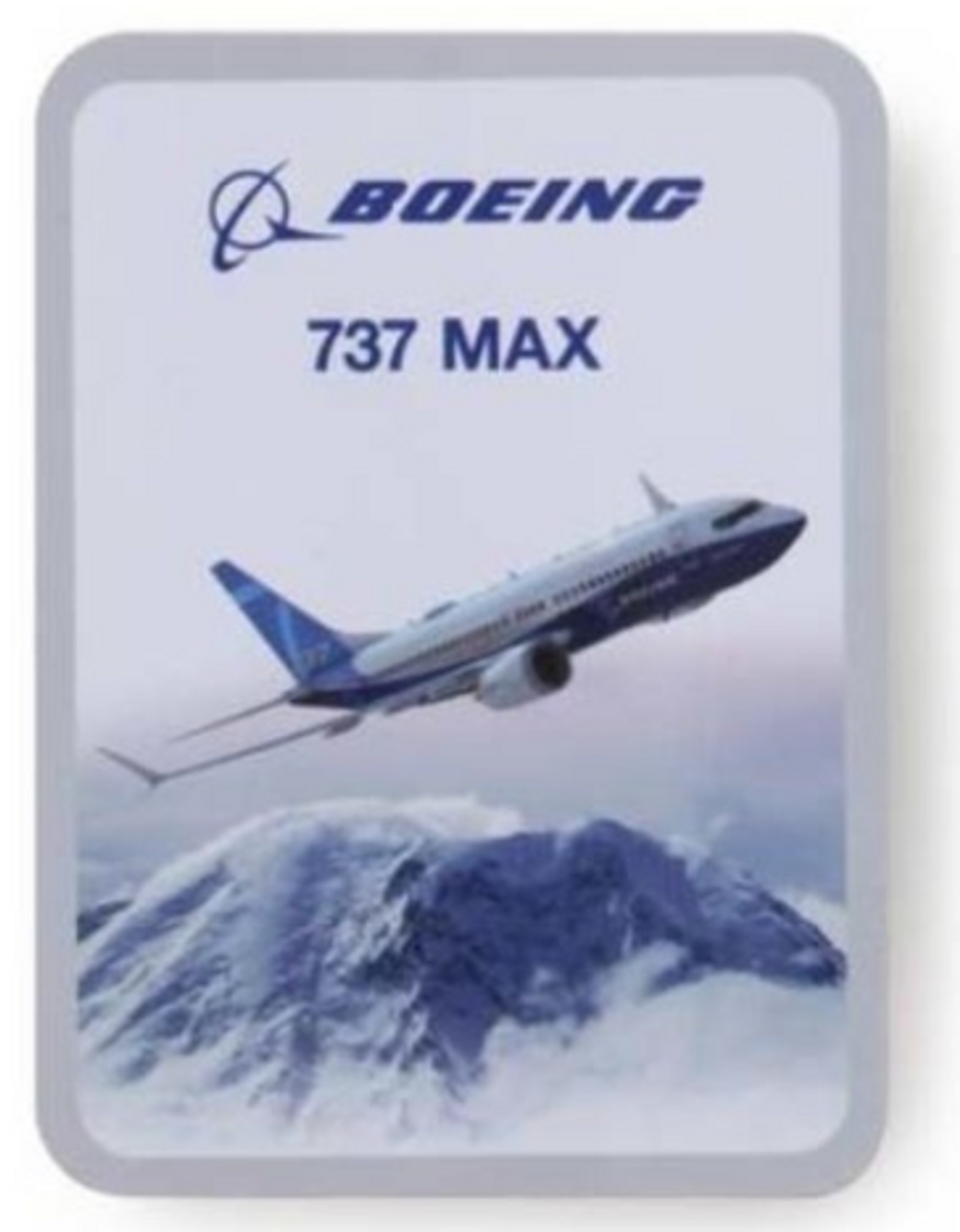 Boeing Endeavors 737 MAX Sticker