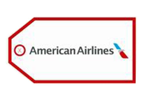 American Airlines Luggage Tag