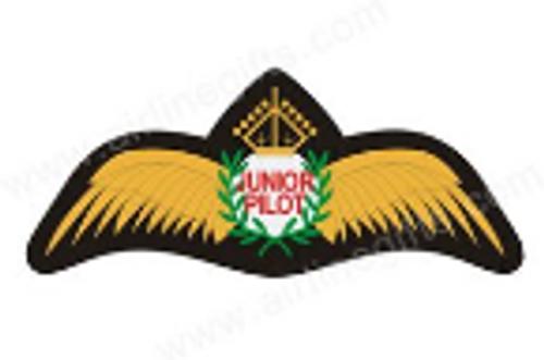 Junior Pilot Wings Iron Patch