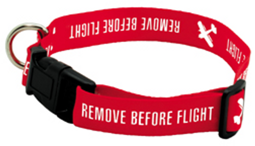 Remove Before Flight Dog Collar - Medium