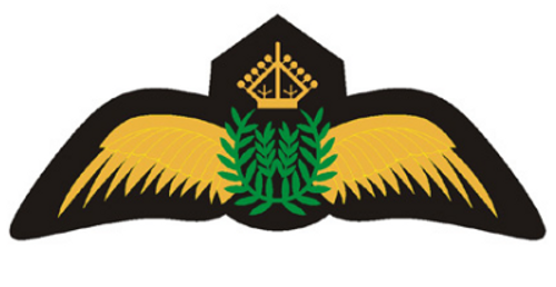 Gold Pilot Wings  Iron-On Patch