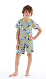 Boys Bright Dinosaur Print Pyjama Set: Short Bottoms